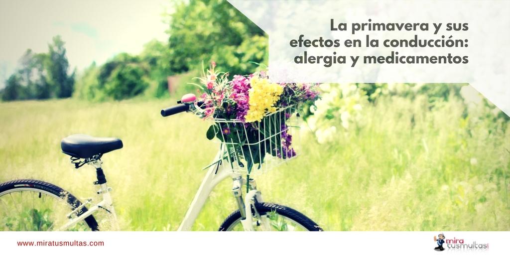 La primavera y sus efectos en la conducción. Miratusmultas.com